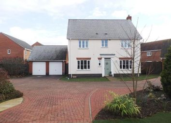 Thumbnail 4 bed detached house for sale in Great Cornard, Sudbury, Suffolk