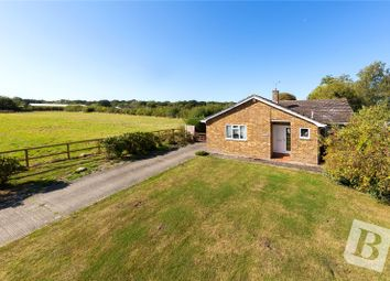 3 bed bungalow for sale in Ingatestone Road, Highwood, Essex CM1