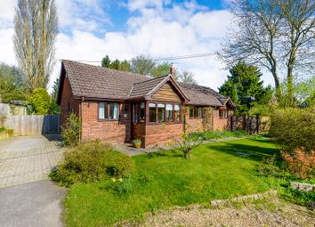 Thumbnail 5 bedroom property for sale in School Road, Sible Hedingham, Halstead