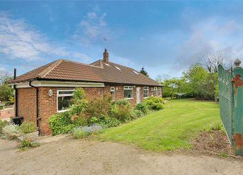 Thumbnail 6 bed bungalow for sale in Daisy Hill Road, Burstwick, Hull, East Yorkshire