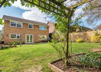 Thumbnail 4 bedroom detached house for sale in Yewens, Chiddingfold, Chiddingfold