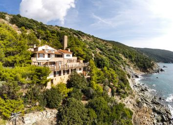 Thumbnail 7 bed villa for sale in Argentario, Monte Argentario, Grosseto, Tuscany, Italy