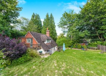 Thumbnail 3 bed property to rent in Petworth Road, Haslemere