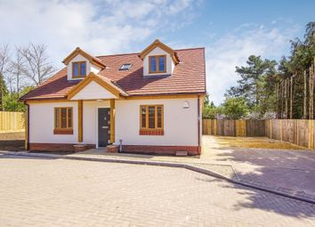 Thumbnail 4 bedroom bungalow for sale in Court Farm Close, Longwell Green, Bristol