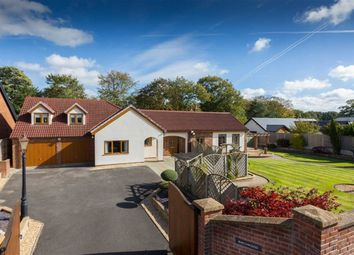 Thumbnail 4 bed detached bungalow for sale in Hill Road, Penwortham, Preston