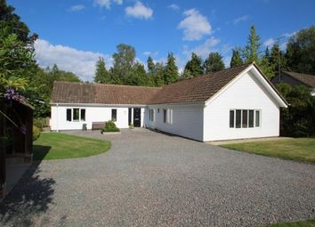 Thumbnail 4 bed bungalow for sale in Oakfield, Hawkhurst, Cranbrook, Kent