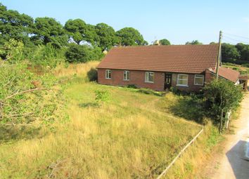 Thumbnail 4 bed detached bungalow for sale in Broadhembury, Honiton