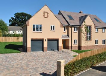 Thumbnail 6 bedroom detached house for sale in Sherlands Heights, Taunton