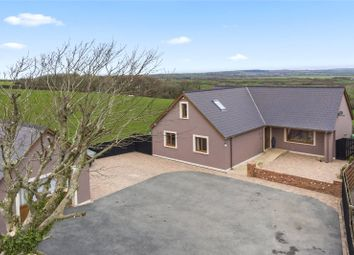 Thumbnail 4 bed detached bungalow for sale in Serendipity, Rosehill, Portfield Gate, Haverfordwest