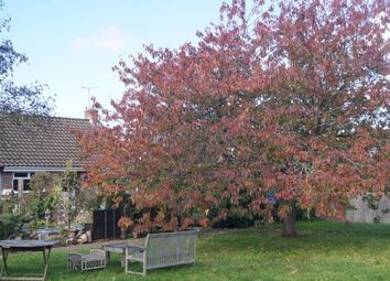 Thumbnail 2 bed bungalow for sale in Greenacres, Steyning, West Sussex