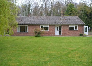 Thumbnail 3 bed detached bungalow to rent in Blackmore Lane, Ludgershall, Andover