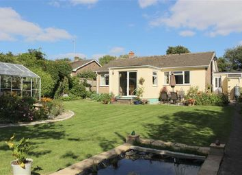Thumbnail 3 bed detached bungalow for sale in Pembroke Road, Manorbier, Tenby
