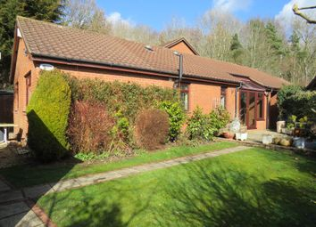 Thumbnail 4 bed detached bungalow for sale in Lapwing Close, Northampton