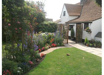 Thumbnail 4 bed cottage for sale in Church Lane, Bury St. Edmunds