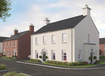 Thumbnail 3 bed semi-detached house for sale in 12, Temple Hall, Templepatrick