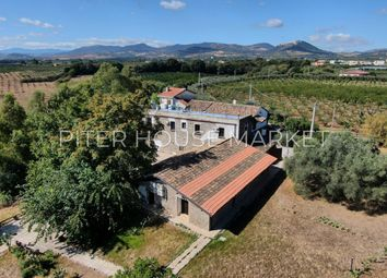 Thumbnail Farmhouse for sale in Vicino Rotondella, Policoro, Matera, Basilicata, Italy