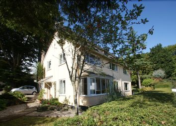 Thumbnail 4 bed detached house for sale in Broadsands Road, Paignton