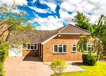 Thumbnail 5 bedroom bungalow to rent in Rhoslyne, Upper Basildon