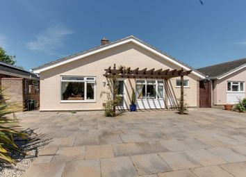 Thumbnail 3 bed detached bungalow for sale in Rugosa Close, Stanway, Colchester