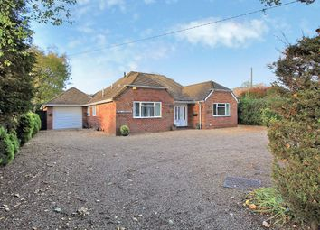 Thumbnail 4 bed detached bungalow for sale in Winchester Road, Four Marks, Hampshire