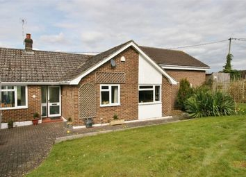 Thumbnail 4 bed bungalow to rent in Markson Road, South Wonston, Winchester