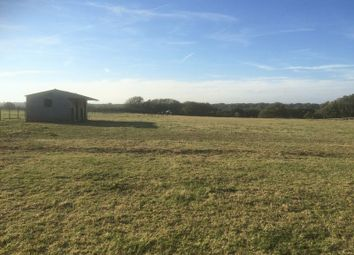 Thumbnail Equestrian property for sale in Doctors Lane, Church Hougham, Dover