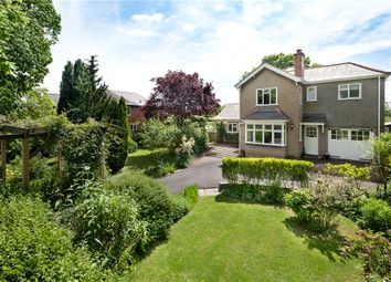 Thumbnail 4 bed detached house to rent in Kings Acre Road, Hereford