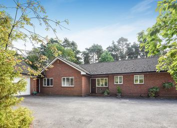 Thumbnail 5 bedroom bungalow to rent in Tintagel Road, Finchampstead, Wokingham