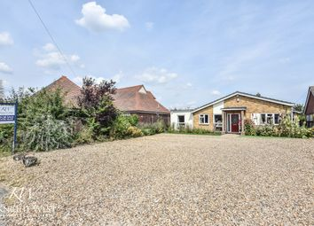 Thumbnail 4 bed detached bungalow for sale in Heath Road, Fordham Heath, Colchester