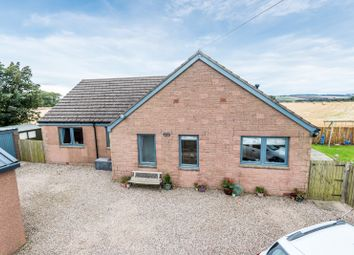 Thumbnail 3 bed bungalow for sale in Drunkendub, Arbroath, Angus