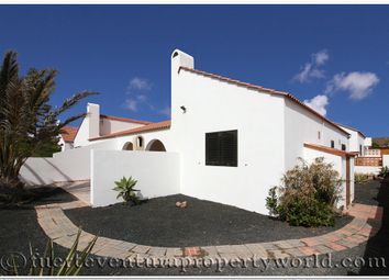Thumbnail 2 bed semi-detached bungalow for sale in Parque Holandes, Fuerteventura, Canary Islands, Spain
