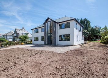 Thumbnail 4 bedroom detached house for sale in Tavistock Road, Crownhill, Plymouth