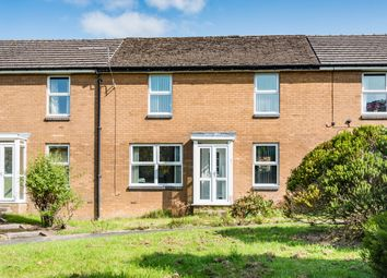 Thumbnail 3 bed terraced house for sale in Westminster Avenue, Sheffield
