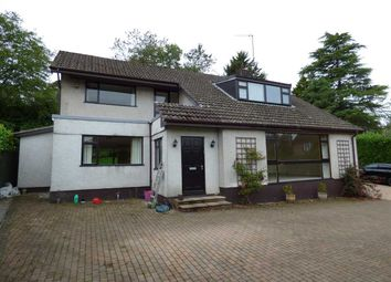 Thumbnail 4 bed detached house to rent in Two Oaks, Dinch Hill Lane, Shirenewton, Chepstow