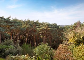 Thumbnail 2 bed flat for sale in Carisbrooke, Canford Cliffs, Poole