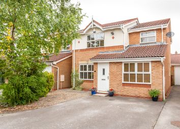 Thumbnail 4 bed detached house for sale in Hazelnut Grove, York