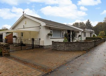 Thumbnail 3 bed bungalow for sale in Woodside Place, Dunlop