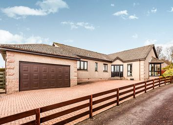 Thumbnail 4 bed bungalow for sale in Cruickshank Park, Hillside, Montrose