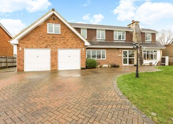Thumbnail 5 bed detached house for sale in School Road, Waltham St. Lawrence