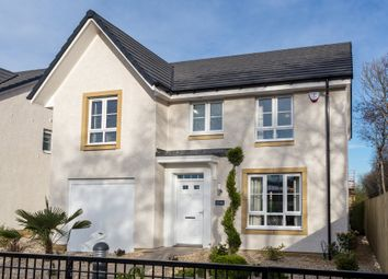 "Thumbnail 4 bedroom detached house for sale in ""Dornoch"" at Rowan Street, Wishaw"