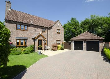 Thumbnail 4 bed detached house for sale in The Loke, Wymondham