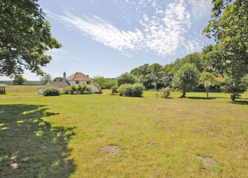 Thumbnail 3 bed country house for sale in North Ripley, Bransgore, Christchurch