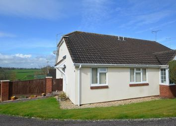 Thumbnail 2 bed semi-detached bungalow for sale in Markers Park, Payhembury, Honiton