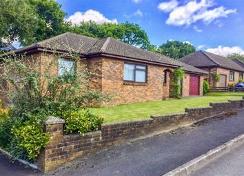 Thumbnail 3 bed detached bungalow for sale in Maesglasnant, Cwmffrwd, Carmarthen