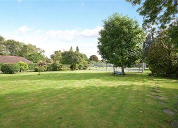 Thumbnail 4 bed detached bungalow for sale in Hamm Court, Weybridge, Surrey