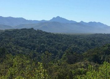 Thumbnail Land for sale in Forest Hall Road, The Crags, Plettenberg Bay, 6600, South Africa