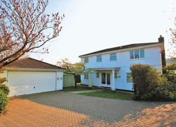 Thumbnail 4 bedroom detached house to rent in Hillview, St Marys Glebe, Port St Mary