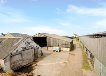 Thumbnail Equestrian property for sale in Penzance, Cornwall