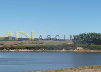 Thumbnail Land for sale in Close To Santiago Do Cacém, Santiago Do Cacém, Santa Cruz, Et Al., Santiago Do Cacém, Setúbal (District), Alentejo, Portugal