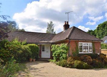 Thumbnail 3 bed detached bungalow for sale in Boundstone Road, Farnham, Surrey